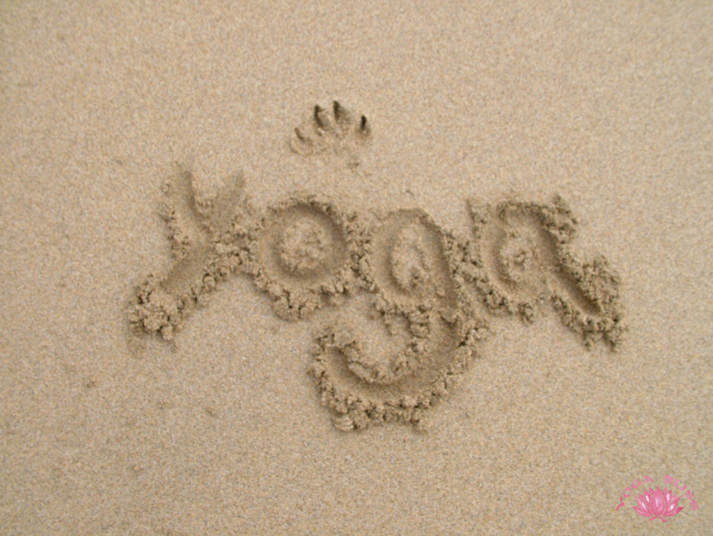 Yoga Bliss backgrounds & wallpapers are free: Simply follow the instructions