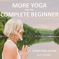 More Yoga for the Complete Beginner